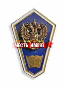 """Значок металлический """"гробик"""", средне гуманитарное образование. (синий)"""